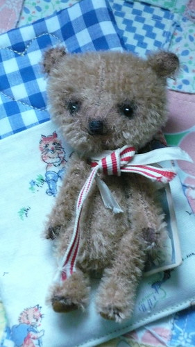 Biscuit Miniature bear | by verykerryberry