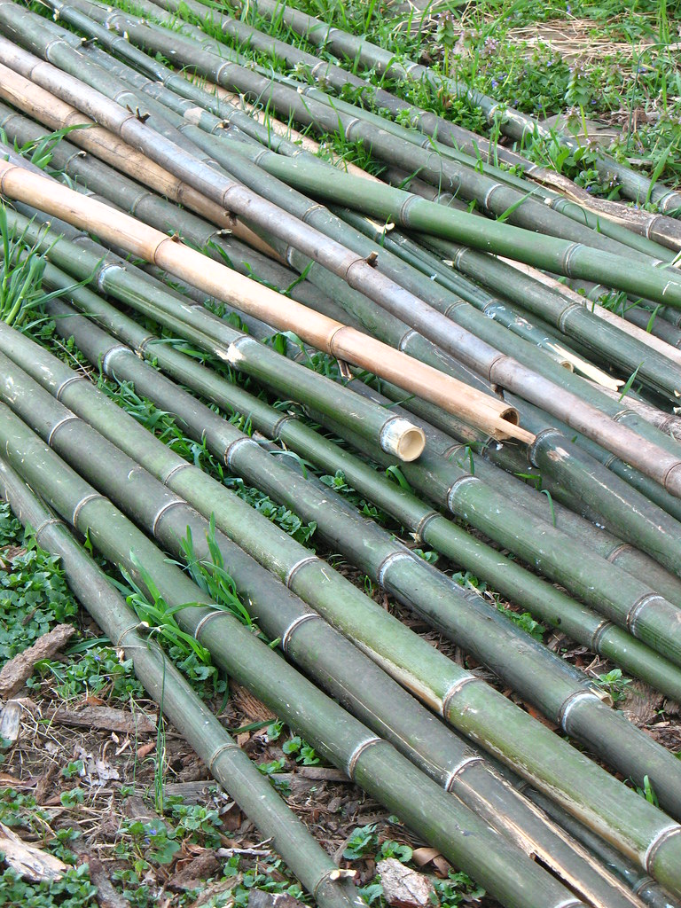 Nj Bamboo Landscaping: Bamboo Poles For Garden Project