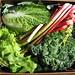 Final Spring Veggie Box :(