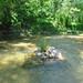 creek rock 2