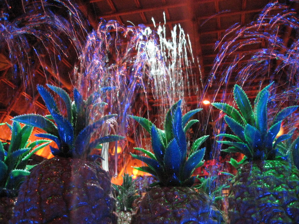 Walt Disney\'s Enchanted Tiki Room Fountain | Place your eyes… | Flickr