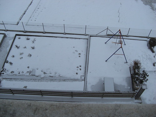 depuis le bord de la fen tre le jardin en hiver bernard junod flickr. Black Bedroom Furniture Sets. Home Design Ideas