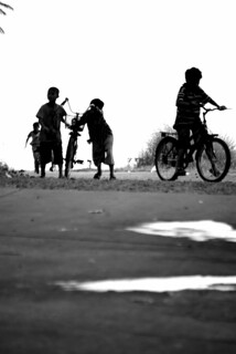 Children & Bikes | by The Hungry Cyclist