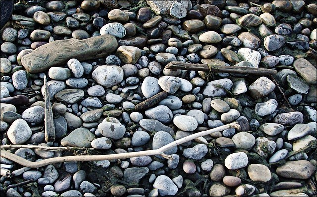Stones and sticks explore photos on for Sticks and stones landscaping