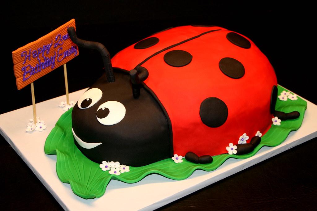 Ladybug Birthday Cake Images