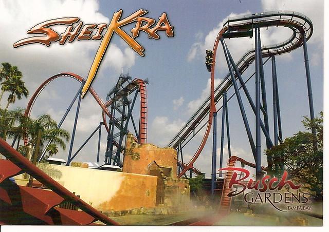Busch gardens sheikra roller coaster postcard sent to shur flickr for New rollercoaster at busch gardens