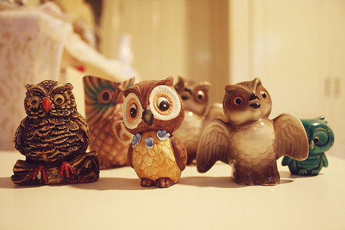 owls | by pearled