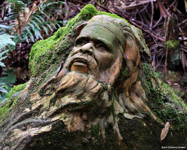 William ricketts sanctuary olinda dandenong ranges vic