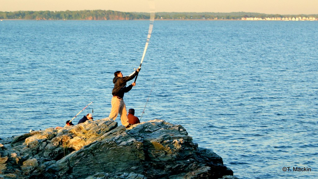 Fishing at bradley park in west haven ct fishing on for Long island sound fishing report