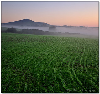 Misty Morning Metamorphosis | by Panorama Paul