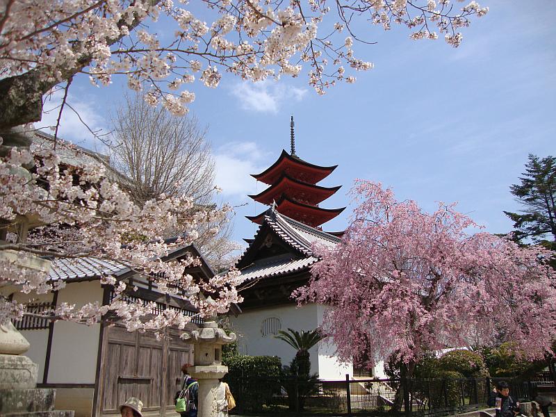 Pagoda On Miyajima Island Japan