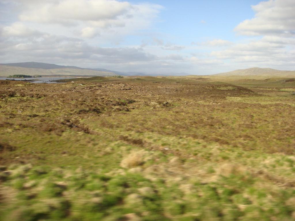 la brughiera scozzese casanova14 flickr