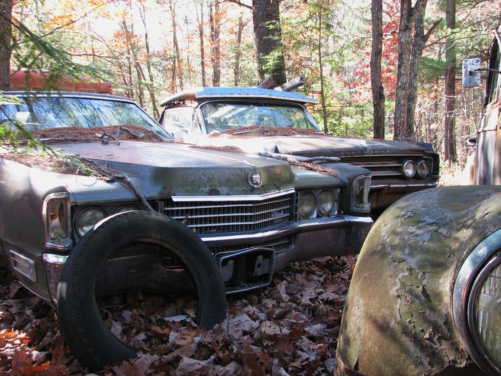 SOME OLD JUNK CARS RUSTING IN THE WOODS IN NOV 2010 | Flickr