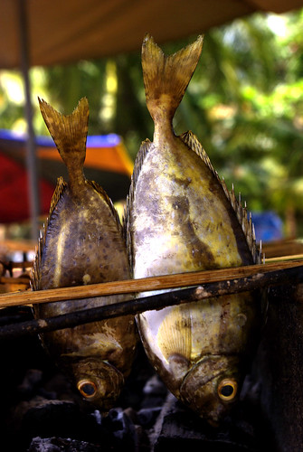 Grilled Fish - Southern Cambodia | by The Hungry Cyclist