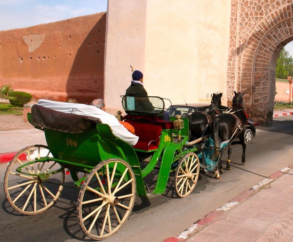 """Résultat de recherche d'images pour """"marrakech tourist"""""""