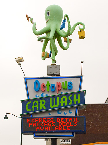 octopus car wash coupons madison wi