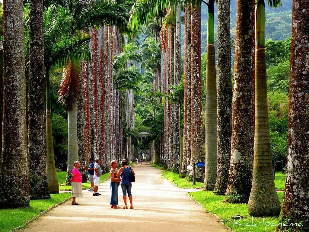 Jardim Botânico  Rio de Janeiro  Um dos dez mais important