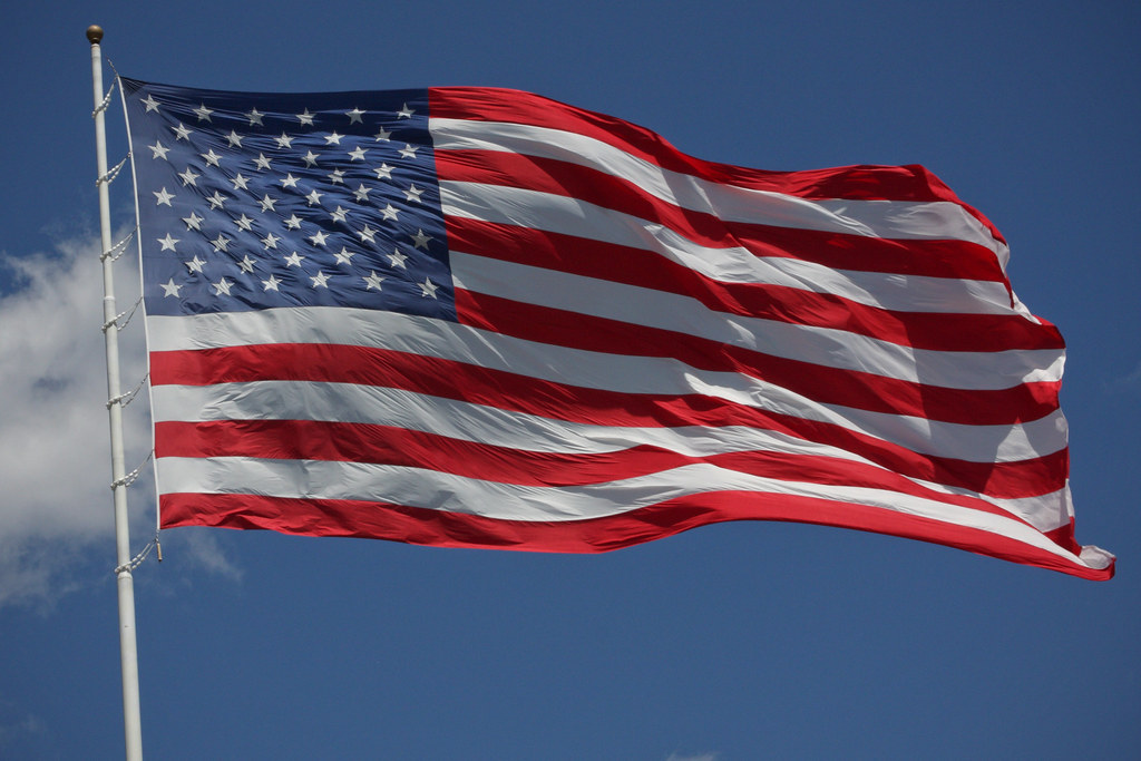 Image result for United states flag