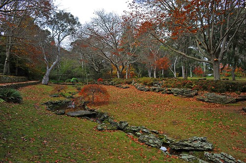 Everglades, Leura | by Merryjack