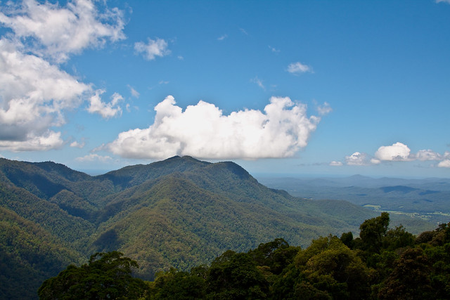 how to avoid dorrigo mountains