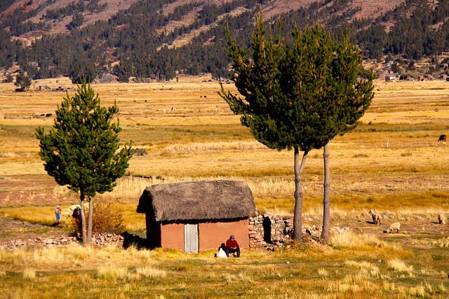 Regi 211 N De Puno Per 218 Zona Rural De Moho Fotos De 20 06 0 Flickr
