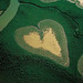 """love heart shaped №7 - (mangrove), Voh, New Caledonia; made famous by aerial photographer Yann Arthus Bertrand and featured on the front cover of his book """"Earth From Above""""."""