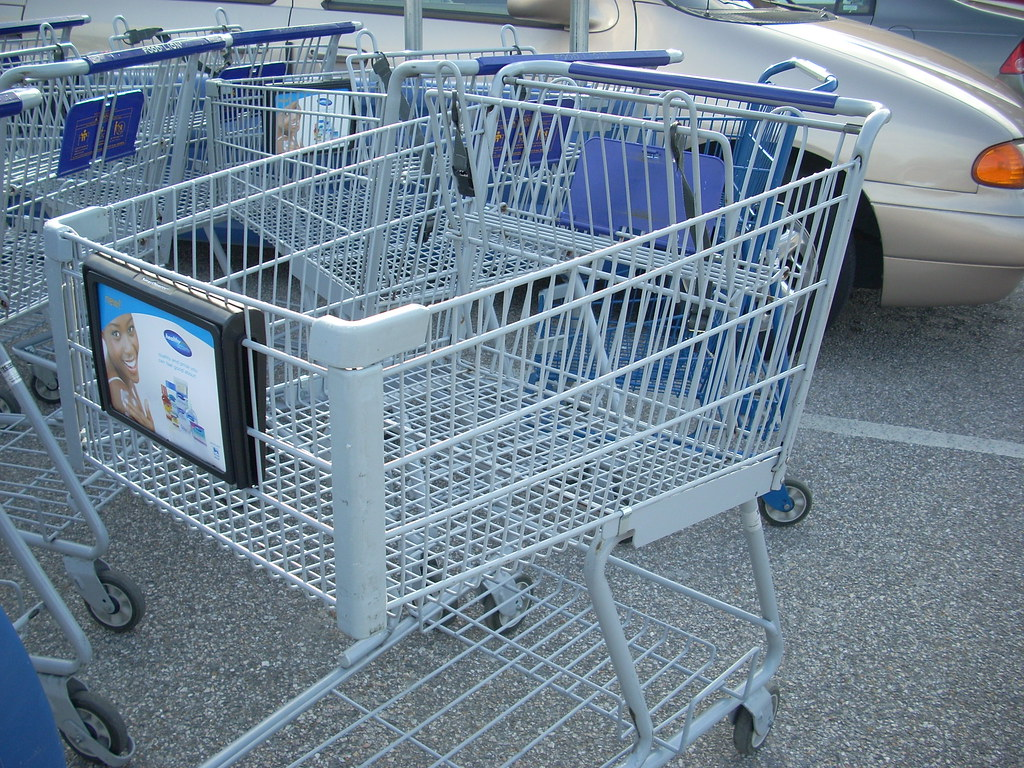 Food lion shopping cart a shopping cart at a food lion for Shopping cuisine