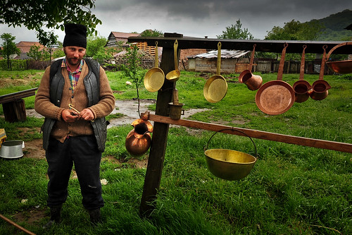 Romanian Coppersmith | by goingslowly