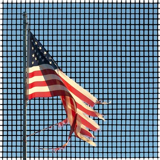 Flag on a grid | by theilr