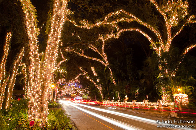 miami christmas lights by judd patterson