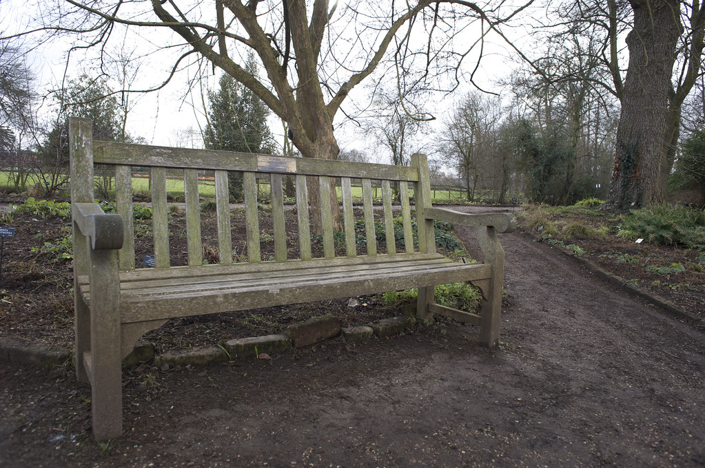 That Bench Will And Lyra S Bench Oxford Botanical