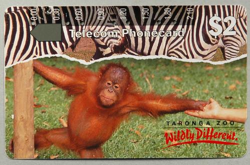 Taronga zoo discount coupons