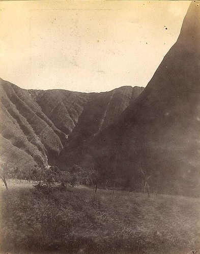 Maggic Spring, Ayers Rock, July 1889 / photographer William Henry Tietkens | by State Library of New South Wales collection