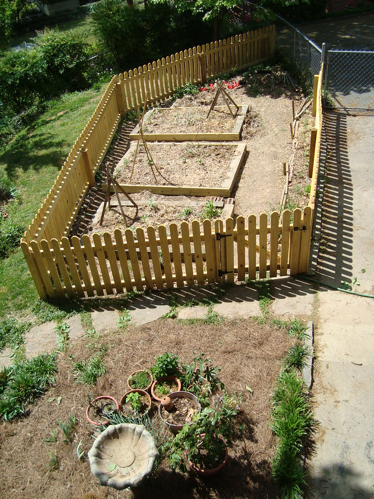 The new garden plan! | Raised beds surrounded by a few other… | Flickr
