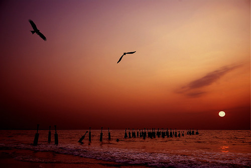 Catch me if You Can....Calicut Beach | by aroon_kalandy