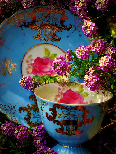 cup and saucer | by damselfly58