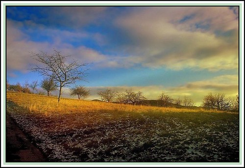 January countryside | by mamietherese1