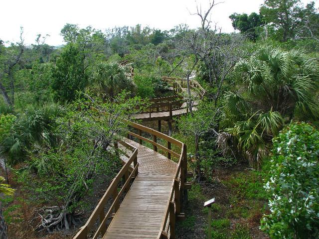 Daggerwing Nature Center Boca Raton Palm Beach County