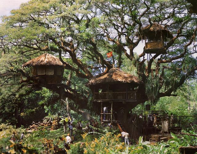 Swiss Family Robinson Treehouse Movie Set Flickr Photo Sharing