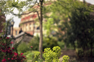 Royal Albert Hall In Bokeh | by Dkillock