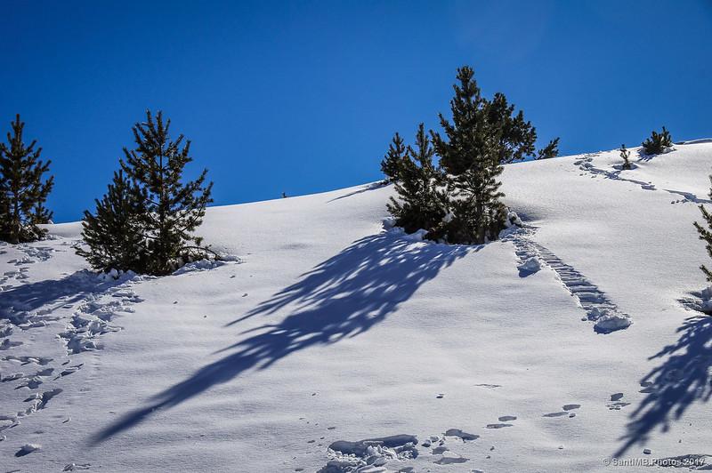 Rastros sobre la nieve cerca del Coll de la Creu d'en Riba, en Núria