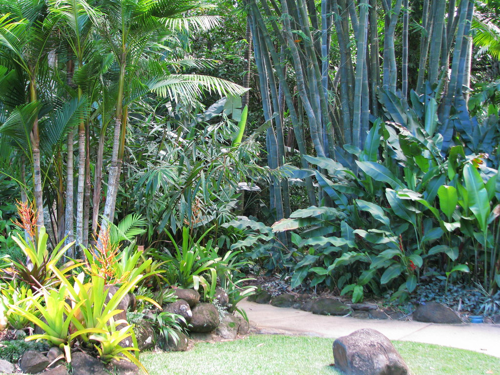 Tropical landscaping cairns botanic gardens one of the for Garden designs queensland