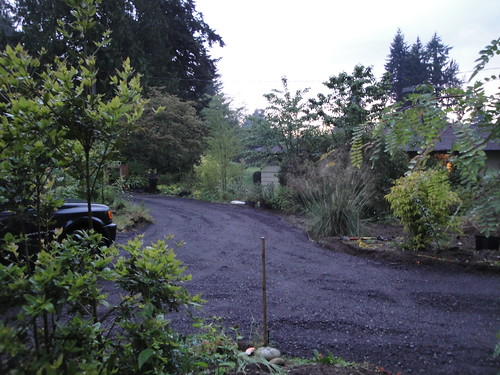 Mid Driveway | by RHR Horticulture