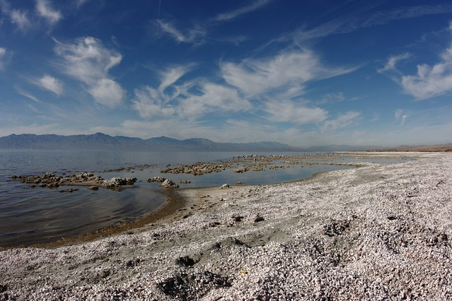 The salton sea at salt creek campground the sand on for Salton sea fishing report