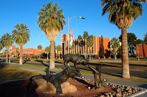 The University of Arizona Campus in Tucson | by UGArdener