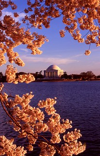 Jefferson Memorial II | by pvanorden (back home)