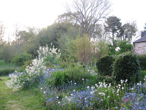 Parterre de printemps lumiere du soir jardin de for Parterre 3d