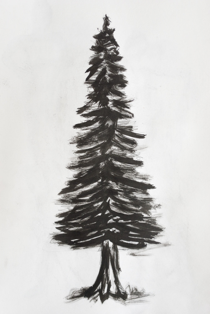 Pine tree | Simple pine tree. Made with ink and a small ...