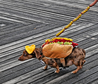 Hot Dog | by Bob Jagendorf