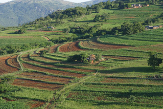 Village Scenery - Swaziland | by whl.travel